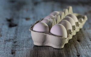 egg carton on wood table